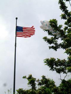 Bag_salutes_usflag