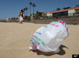 S-PLASTIC-BAG-BAN-REJECTED-large